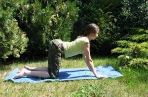 joga - pozycja krowy