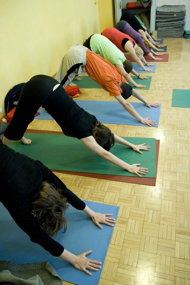 Pozycje jogi – pies z głową w dół