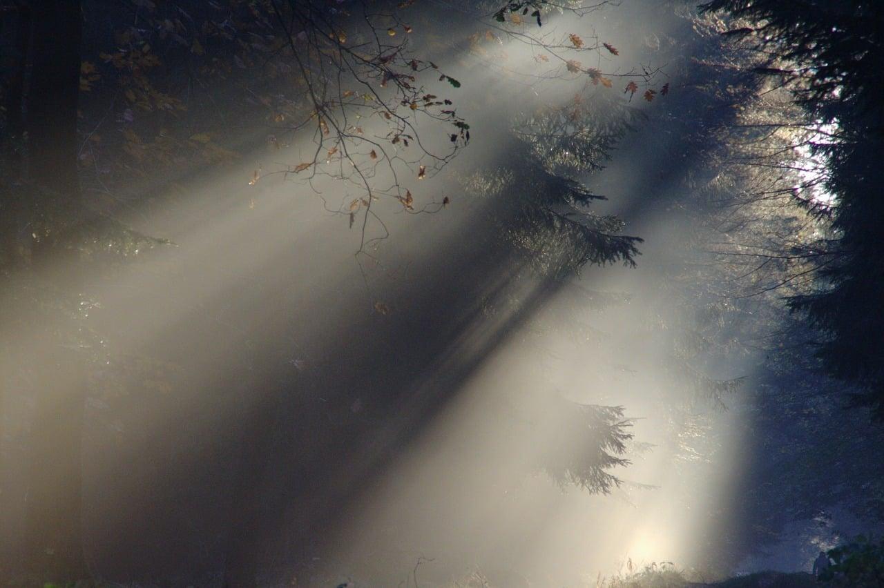 Prana – tchnienie życia. Piotr Marcinów