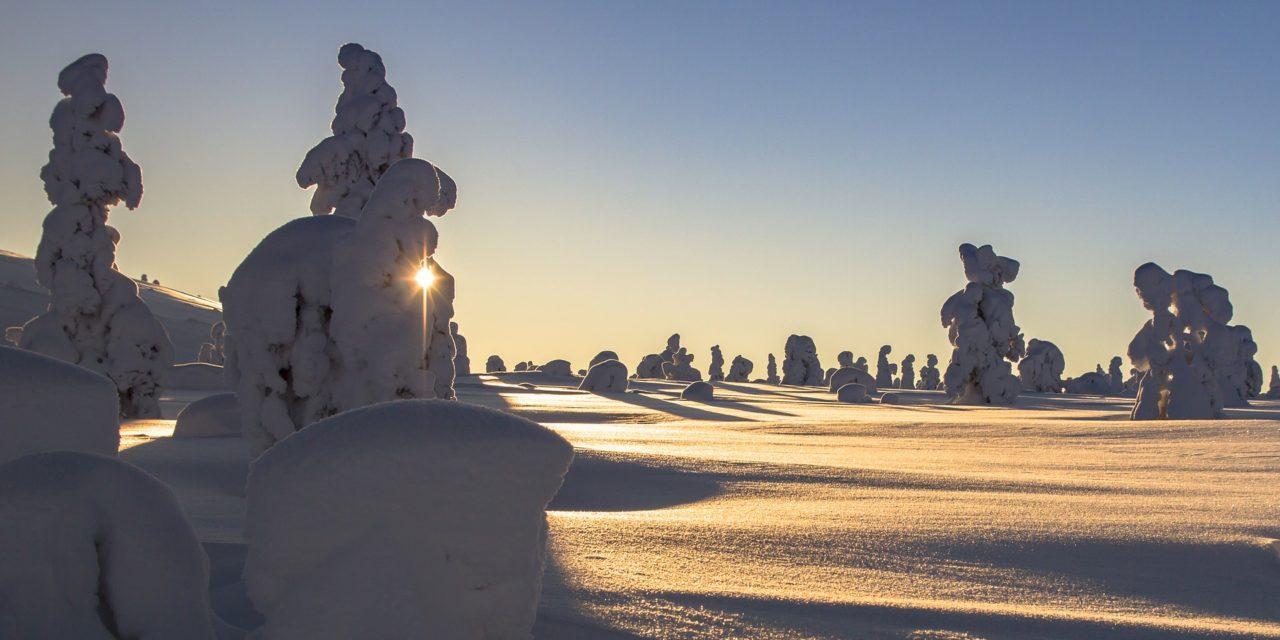 Praktyka jogi zimą i w zgodzie z naturą ~ Ola Ziarnik