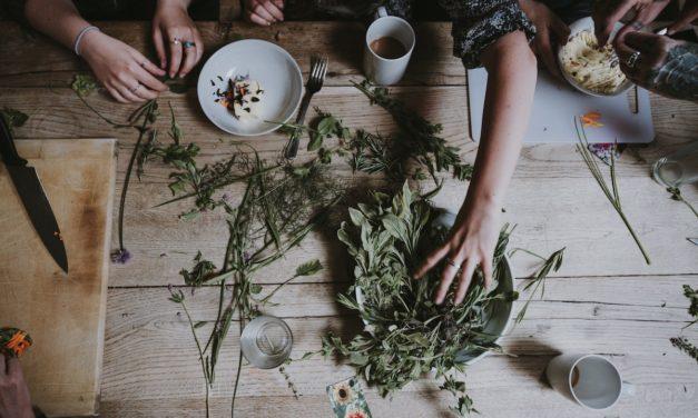 Ajurweda: Jesienią wesprzyj swoją vatę! ~ Marta Lebre